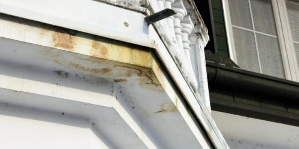 mold on home exterior